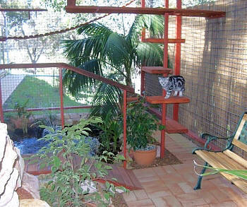 Cat Enclosure 5 Pall Spera Company Realtors