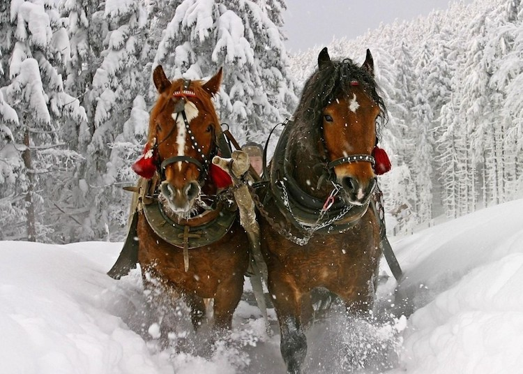 winter-in-vermont